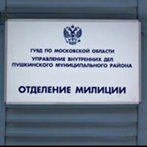 Отделения полиции Нововоронежа